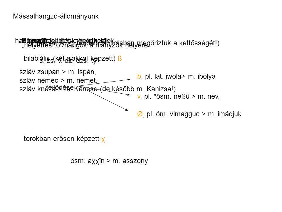 Mássalhangzó-állományunk hangmegfeleltetési tendenciákKikopott bilabiális (két ajakkal képzett) ß fejlődése b, pl.