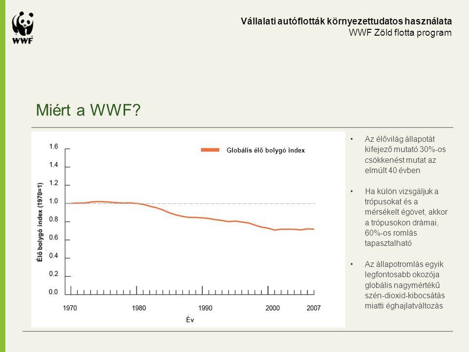 Miért a WWF? Vállalati autóflották környezettudatos használata WWF Zöld flotta program Az élővilág állapotát kifejező mutató 30%-os csökkenést mutat a