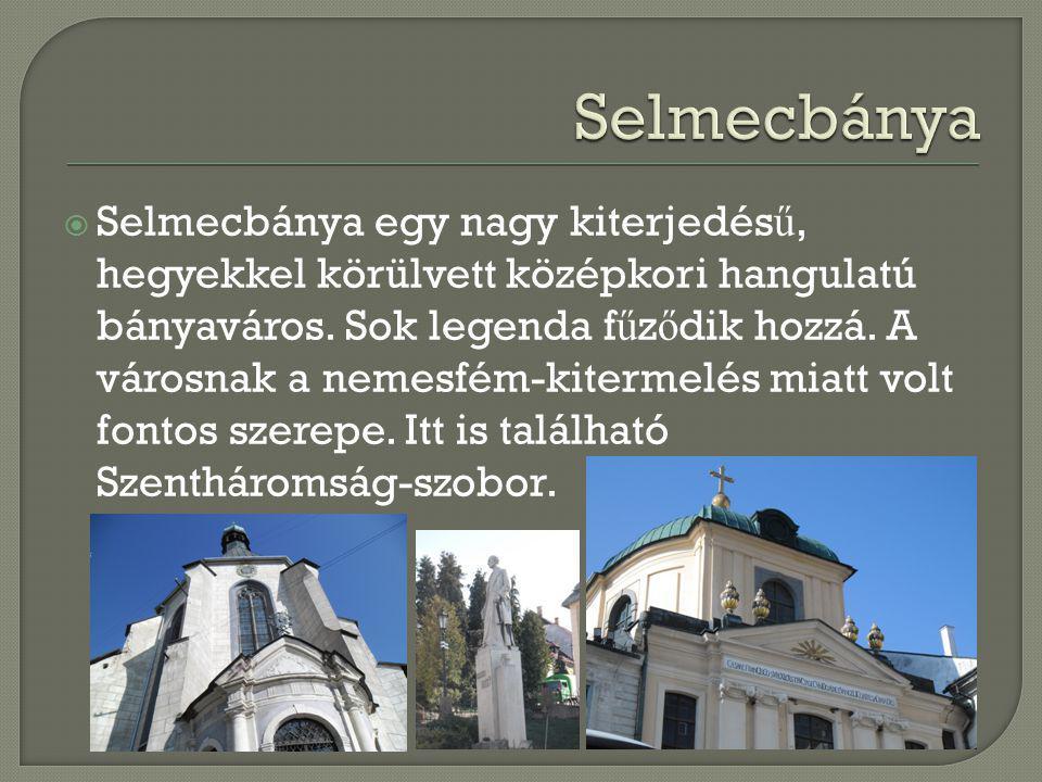  Selmecbánya egy nagy kiterjedés ű, hegyekkel körülvett középkori hangulatú bányaváros. Sok legenda f ű z ő dik hozzá. A városnak a nemesfém-kitermel