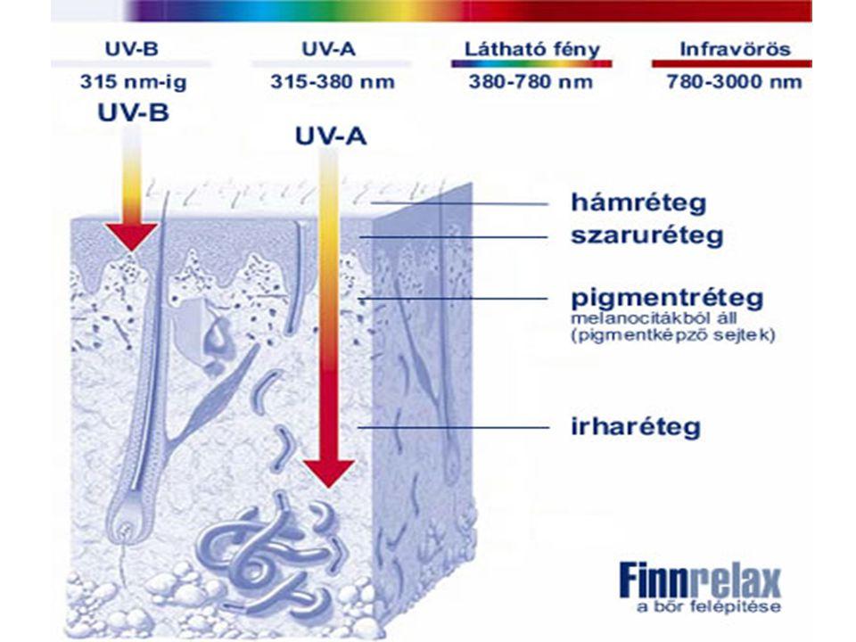Az UV sugarak helyi hatásai A helyi hatások a bőr egyes rétegeiben okoznak változásokat: Hámképző hatás  Az UV sugarak elősegítik a sejtek növekedését, gyorsítják osztódásukat (bazális réteg sejtjei, hajszemölcs mátrixsejtjei).