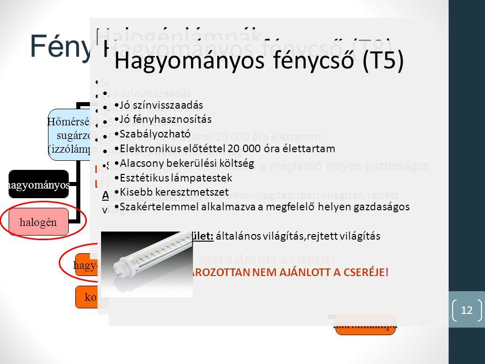 12 Fényforrások csoportosítása Fényforrások Hőmérsékleti sugárzók (izzólámpák) hagyományos halogén Kisüléses fényforrások kisnyomású fénycső hagyományos kompakt indukciós lámpa kisnyomású nátriumlámpa nagynyomású higanylámpa fémhalogén lámpa nagynyomású nátriumlámpa Félvezető-alapú fényforrások LED-ek Halogénlámpák Szabályozható Kiváló színvisszaadás Izzók helyett Alacsony bekerülési költség Szakértelemmel alkalmazva a megfelelő helyen gazdaságos IRÁNYÍTOTT FÉNYŰ HALOGÉNLÁMPÁK MÁR HELYETTESÍTHETŐEK LEDDEL (50W-IG) Hagyományos fénycső (T8) Jó színvisszaadás Jó fényhasznosítás Szabályozható Elektronikus előtéttel 20 000 óra élettartam Alacsony bekerülési költség Szakértelemmel alkalmazva a megfelelő helyen gazdaságos Alkalmazási terület: általános világítás, ipari világítás, rejtett világítás NEM AJÁNLOTT A CSERÉJE.