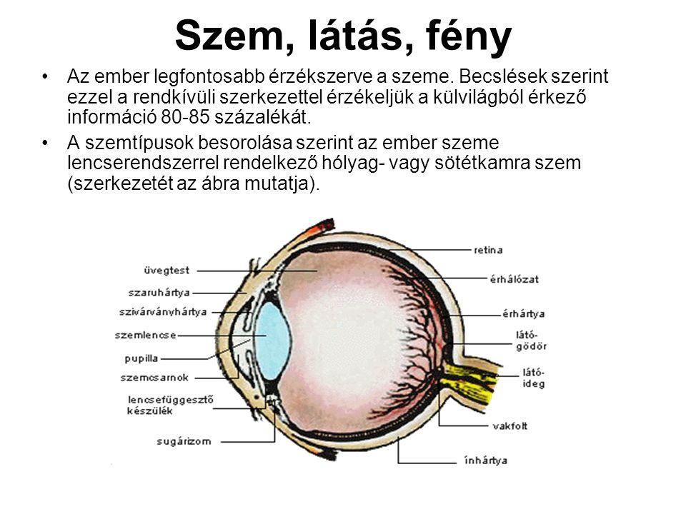 Szem, látás, fény Az ember legfontosabb érzékszerve a szeme. Becslések szerint ezzel a rendkívüli szerkezettel érzékeljük a külvilágból érkező informá