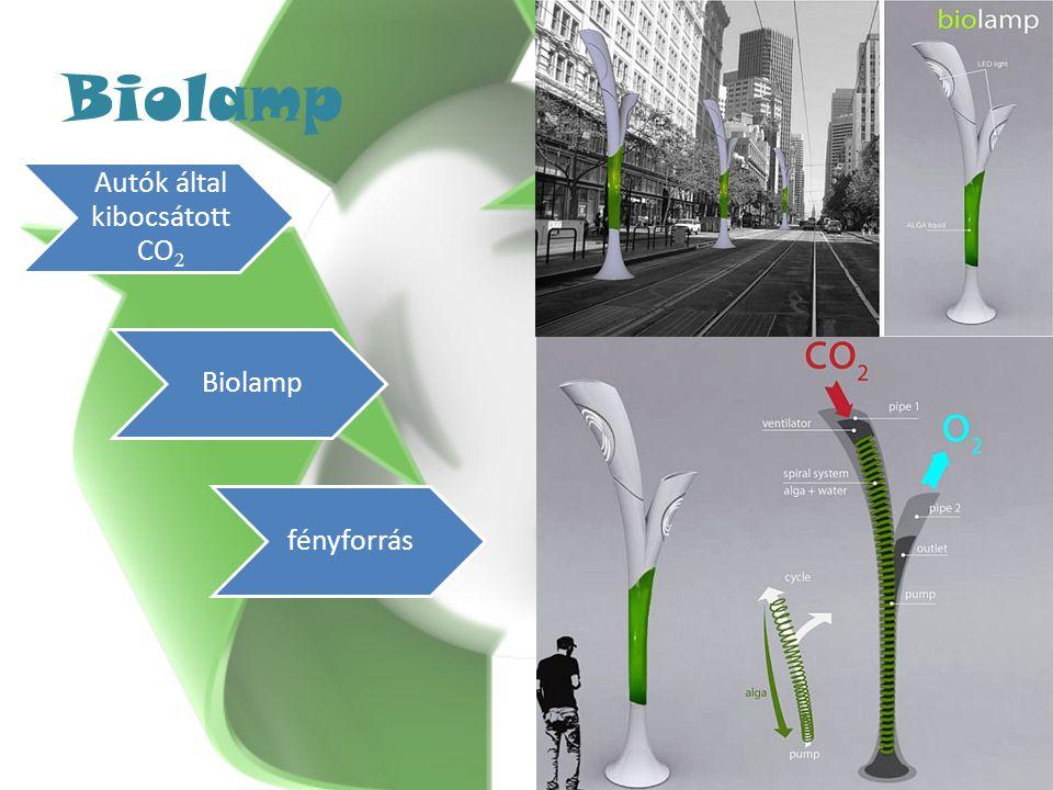 Biolamp Autók által kibocsátott CO 2 Biolamp fényforrás