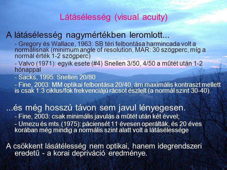 Látásélesség (visual acuity) A látásélesség nagymértékben leromlott... - Gregory és Wallace, 1963: SB téri felbontása harmincada volt a normálisnak (m