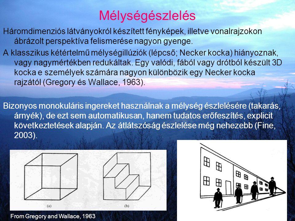 Mélységészlelés Háromdimenziós látványokról készített fényképek, illetve vonalrajzokon ábrázolt perspektíva felismerése nagyon gyenge. A klasszikus ké