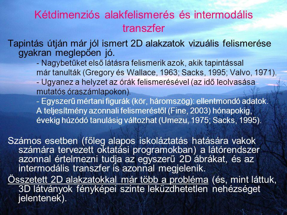 Kétdimenziós alakfelismerés és intermodális transzfer Tapintás útján már jól ismert 2D alakzatok vizuális felismerése gyakran meglepően jó. - Nagybetű