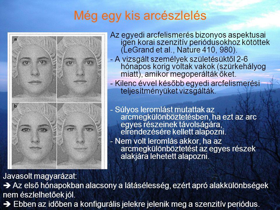 Még egy kis arcészlelés Az egyedi arcfelismerés bizonyos aspektusai igen korai szenzitív periódusokhoz kötöttek (LeGrand et al., Nature 410, 980). - A
