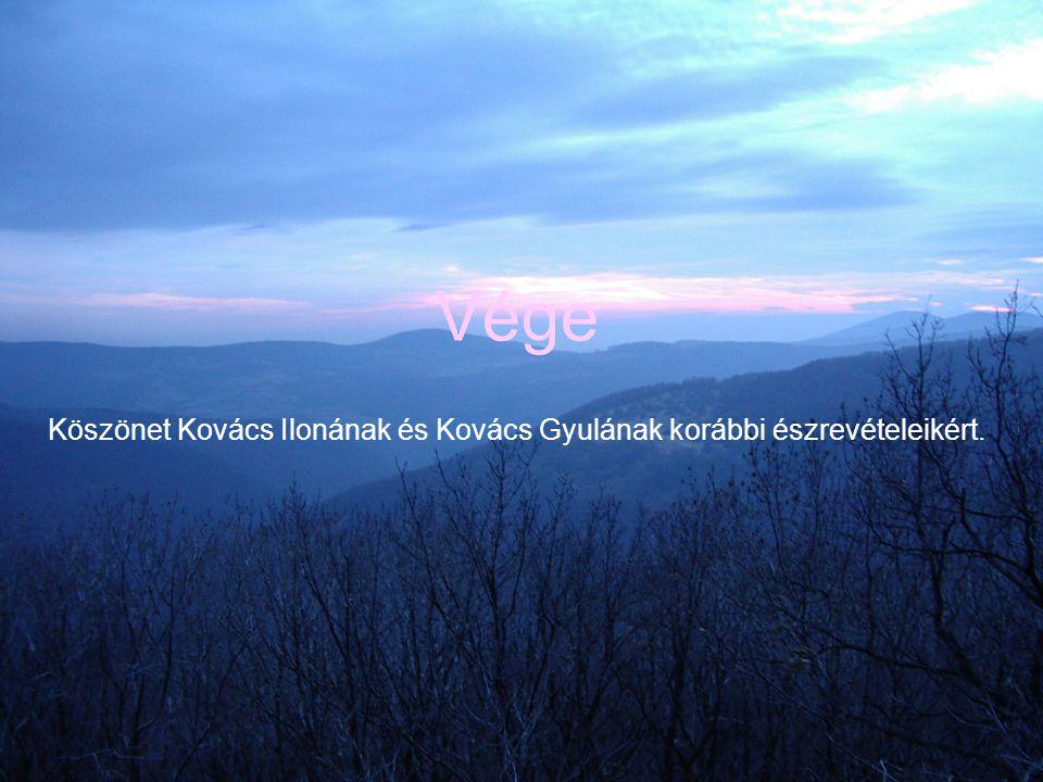 Vége Köszönet Kovács Ilonának és Kovács Gyulának korábbi észrevételeikért.