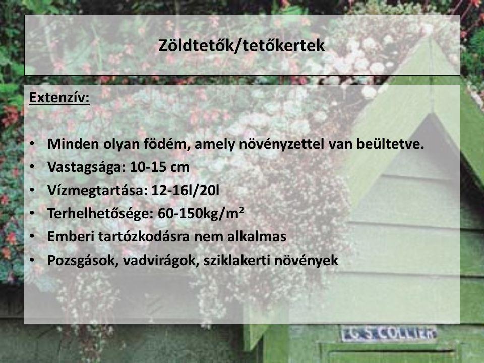 Zöldtetők/tetőkertek Extenzív: Minden olyan födém, amely növényzettel van beültetve.