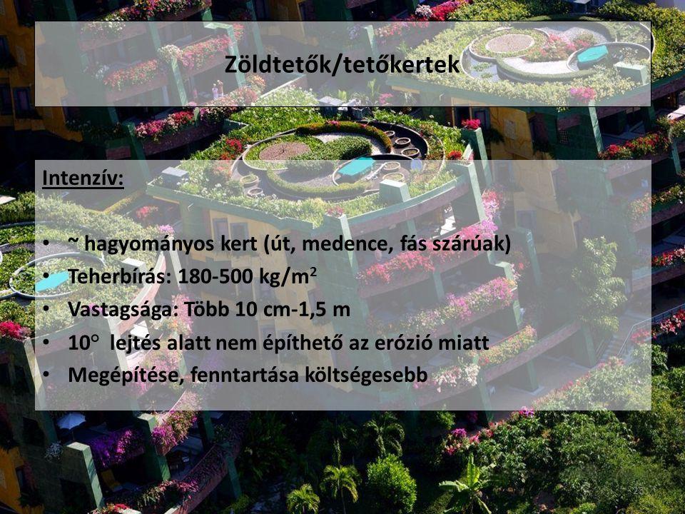Zöldtetők/tetőkertek Intenzív: ~ hagyományos kert (út, medence, fás szárúak) Teherbírás: 180-500 kg/m 2 Vastagsága: Több 10 cm-1,5 m 10° lejtés alatt nem építhető az erózió miatt Megépítése, fenntartása költségesebb 23