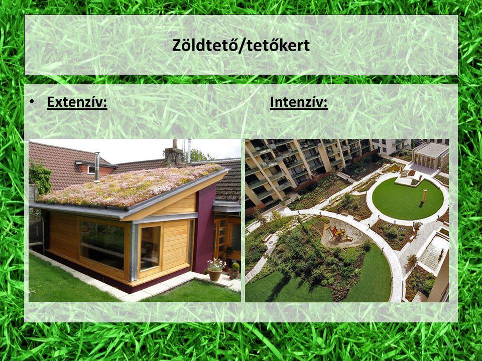 Zöldtető/tetőkert Extenzív:Intenzív: 24