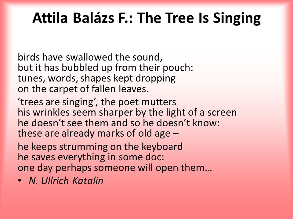 Attila Balázs F.: The Tree Is Singing birds have swallowed the sound, but it has bubbled up from their pouch: tunes, words, shapes kept dropping on th