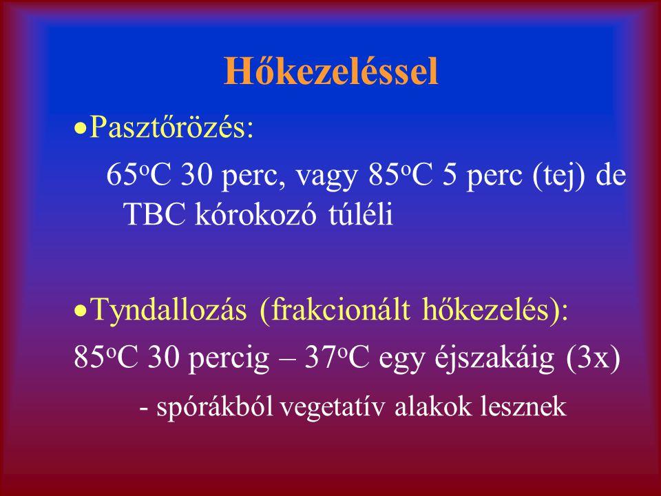 Hőkezeléssel  Pasztőrözés: 65 o C 30 perc, vagy 85 o C 5 perc (tej) de TBC kórokozó túléli  Tyndallozás (frakcionált hőkezelés): 85 o C 30 percig –