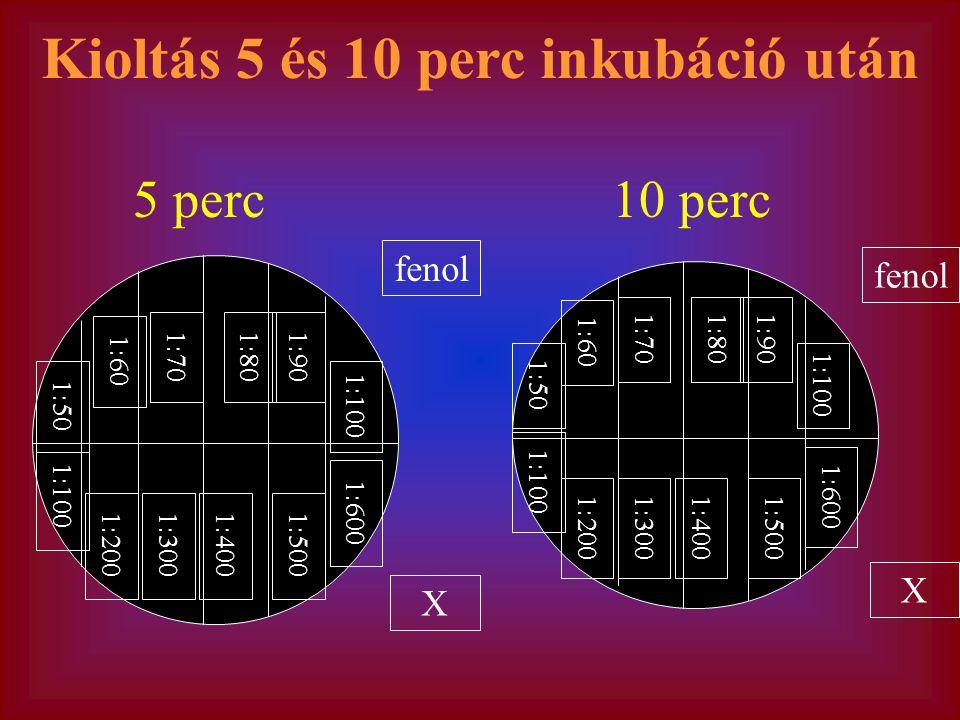fenol X 1:50 1:70 1:60 1:901:80 1:100 1:300 1:200 1:4001:500 1:600 fenol X 1:50 1:70 1:60 1:901:80 1:100 1:300 1:200 1:4001:500 1:600 5 perc10 perc Kioltás 5 és 10 perc inkubáció után