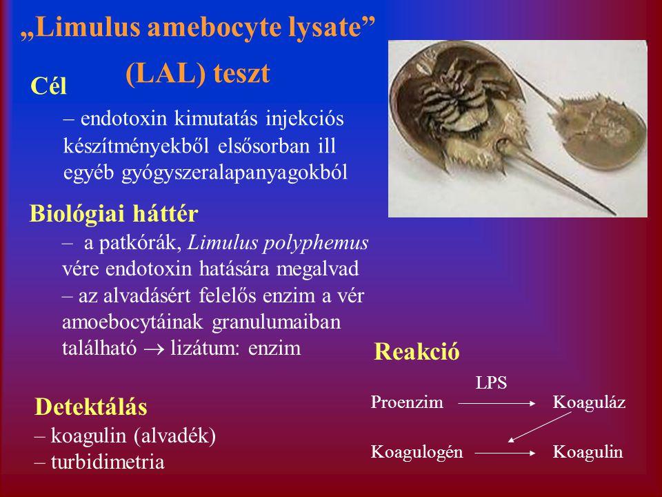 """""""Limulus amebocyte lysate (LAL) teszt Biológiai háttér – a patkórák, Limulus polyphemus vére endotoxin hatására megalvad – az alvadásért felelős enzim a vér amoebocytáinak granulumaiban található  lizátum: enzim ProenzimKoaguláz KoagulogénKoagulin LPS Reakció Detektálás – koagulin (alvadék) – turbidimetria Cél – endotoxin kimutatás injekciós készítményekből elsősorban ill egyéb gyógyszeralapanyagokból"""