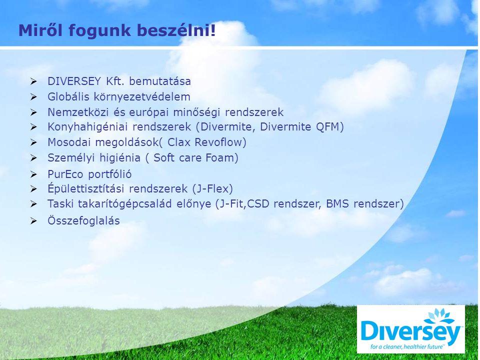 Miről fogunk beszélni!  DIVERSEY Kft. bemutatása  Globális környezetvédelem  Nemzetközi és európai minőségi rendszerek  Konyhahigéniai rendszerek