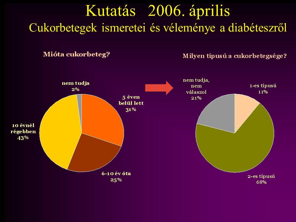 Kutatás 2006. április Cukorbetegek ismeretei és véleménye a diabéteszről