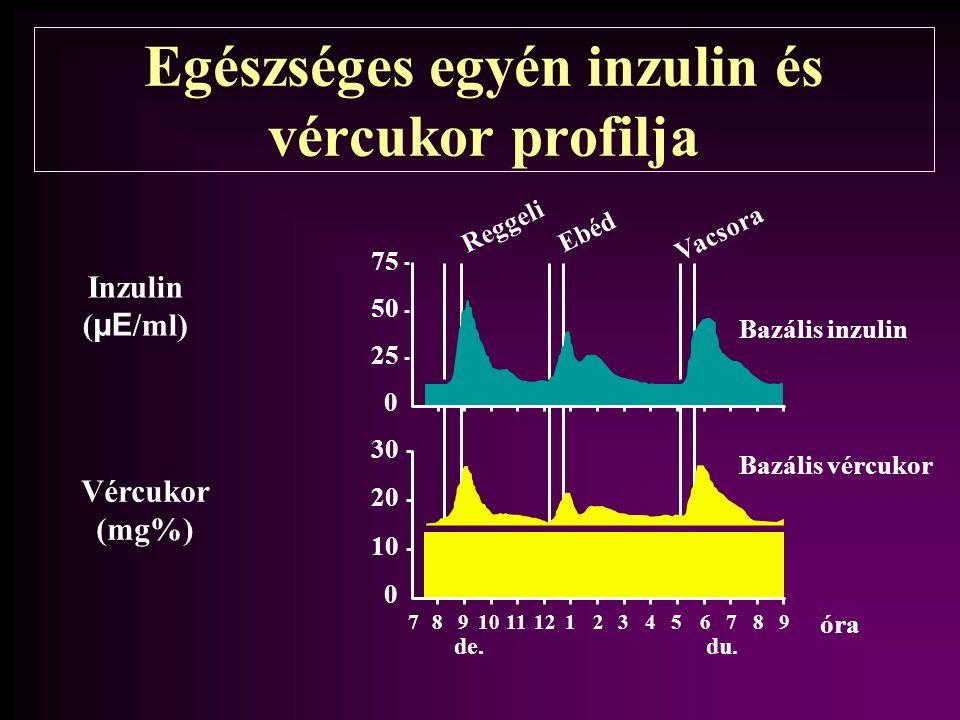 30 20 10 0 789 1112123456789 de.du. Reggeli Ebéd Vacsora 75 50 25 0 Bazális inzulin Bazális vércukor Inzulin ( µE /ml) Vércukor (mg%) óra Egészséges e