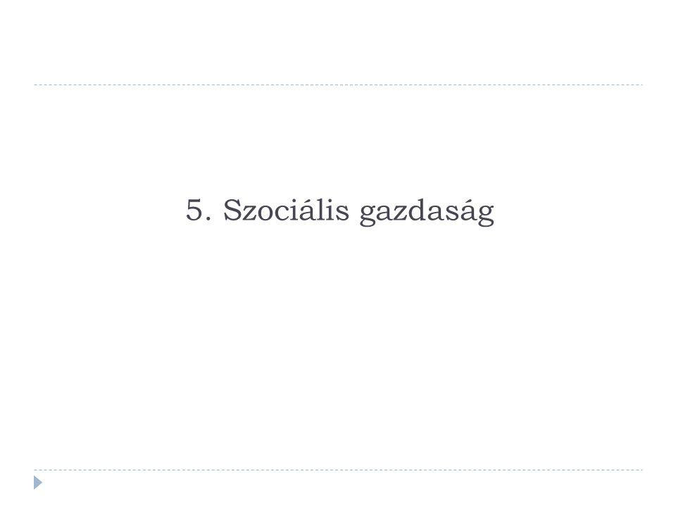 5. Szociális gazdaság