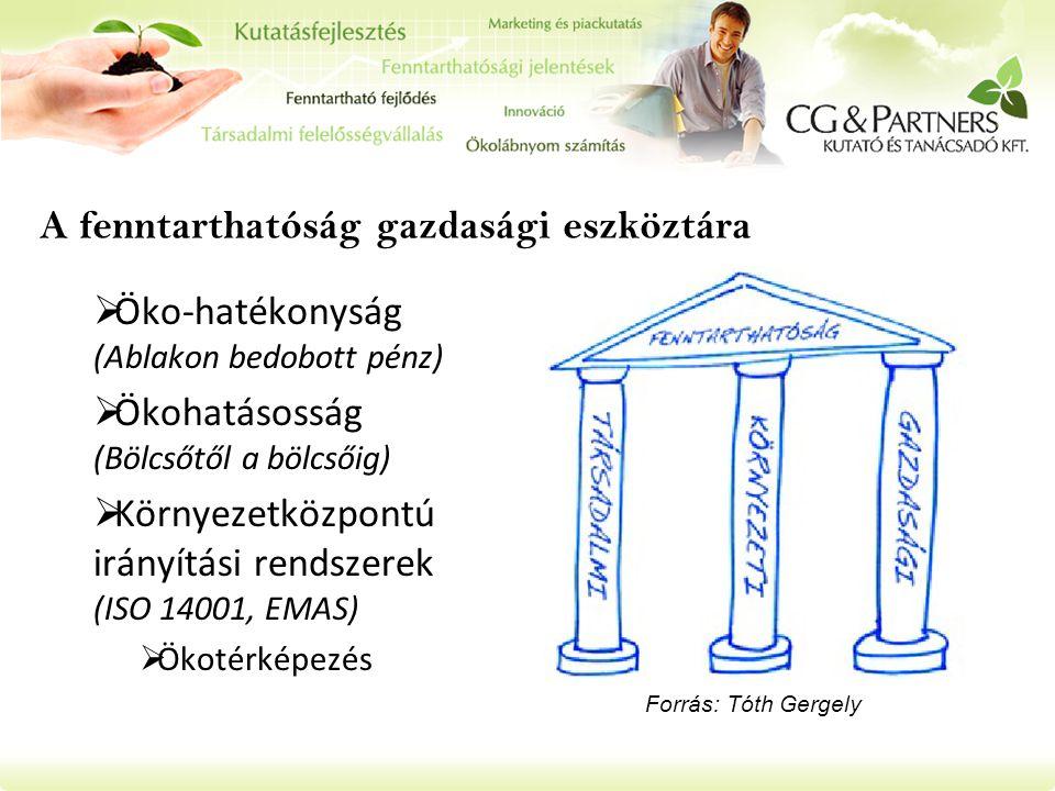 A fenntarthatóság gazdasági eszköztára  Öko-hatékonyság (Ablakon bedobott pénz)  Ökohatásosság (Bölcsőtől a bölcsőig)  Környezetközpontú irányítási rendszerek (ISO 14001, EMAS)  Ökotérképezés Forrás: Tóth Gergely