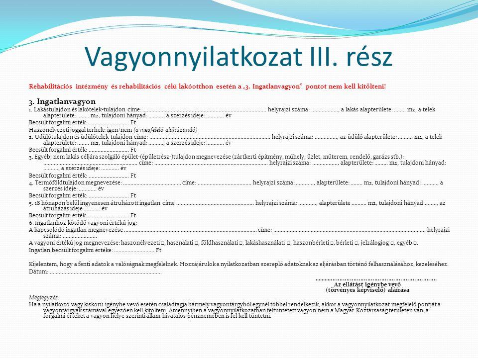 """Vagyonnyilatkozat III. rész Rehabilitációs intézmény és rehabilitációs célú lakóotthon esetén a """"3."""