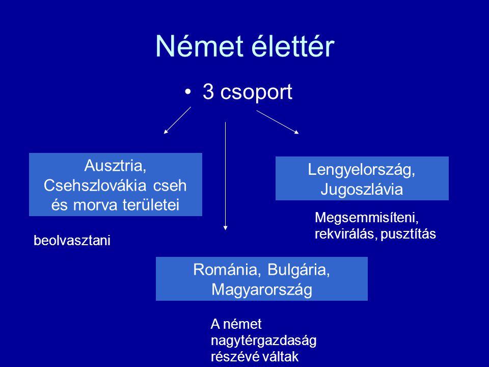 Német élettér 3 csoport Ausztria, Csehszlovákia cseh és morva területei Lengyelország, Jugoszlávia Románia, Bulgária, Magyarország beolvasztani A néme