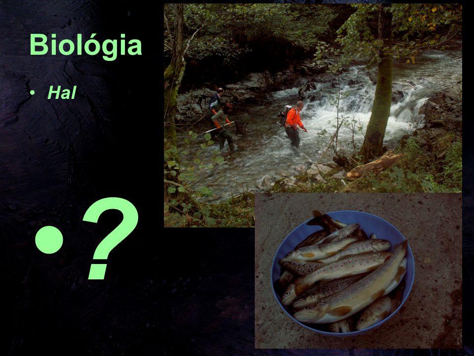 Biológia Hal