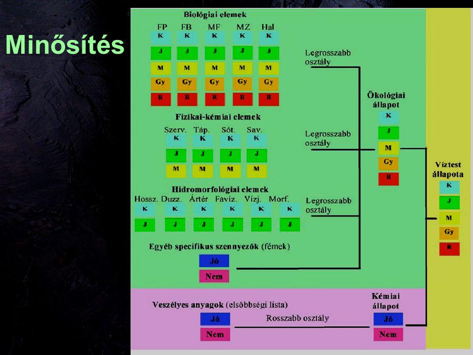 Biológiai értékelés, minősítés VízfolyásÁllóvíz Fitoplankton ++ Fitobentosz ++ Makrofita -- Makrozoobentosz +- Hal +-