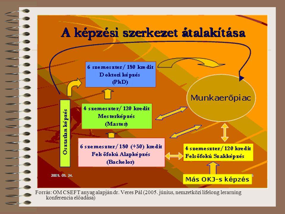 Forrás: OM CSEFT anyag alapján dr. Veres Pál (2005.