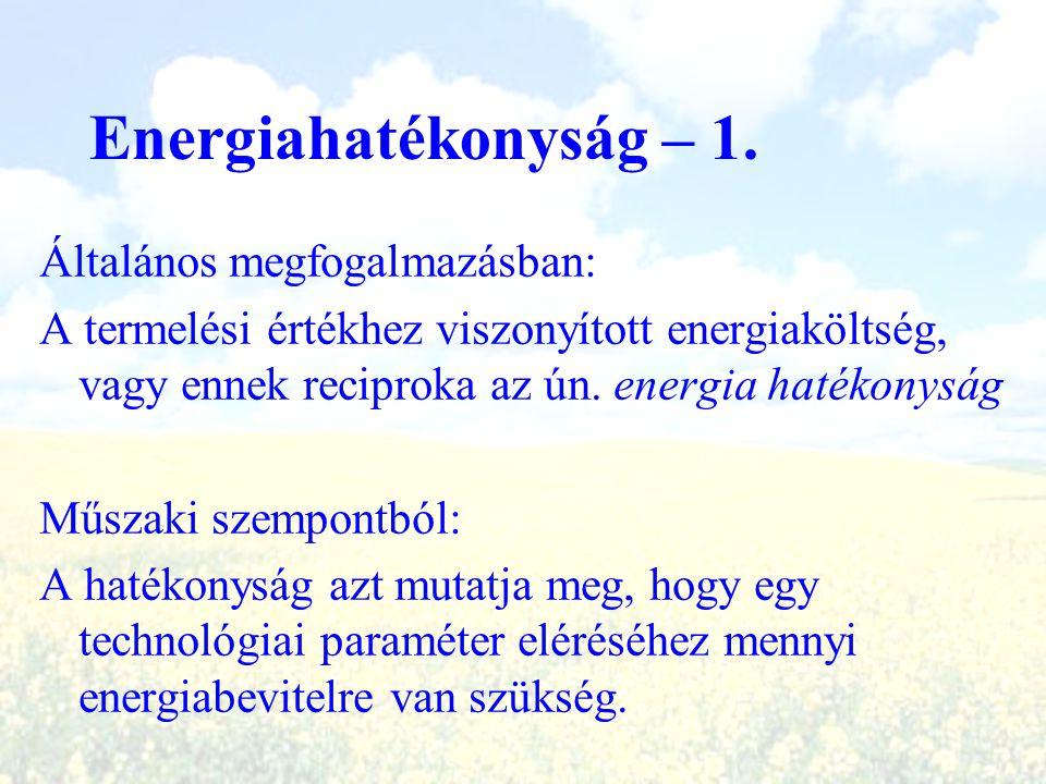 Energiahatékonyság – 1. Általános megfogalmazásban: A termelési értékhez viszonyított energiaköltség, vagy ennek reciproka az ún. energia hatékonyság