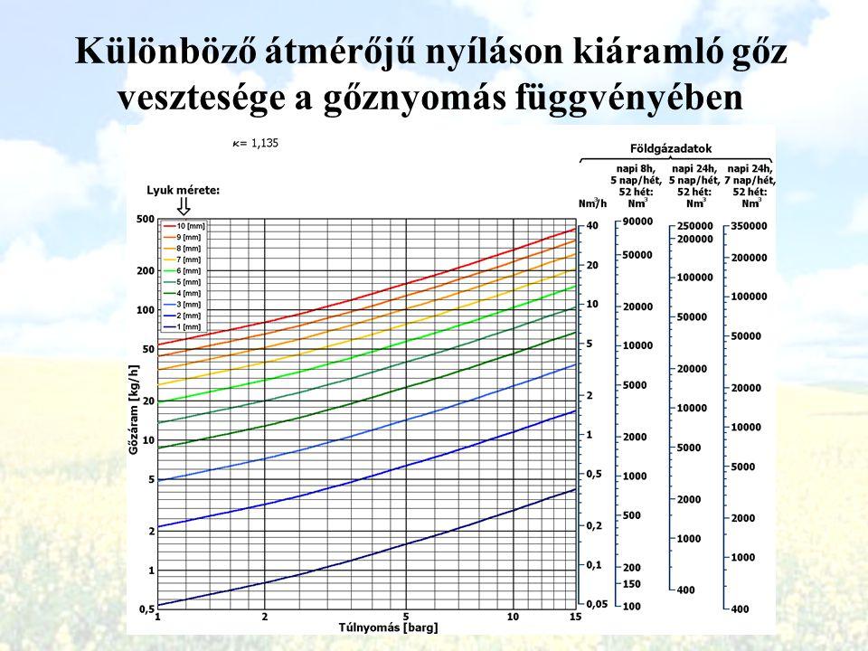 Különböző átmérőjű nyíláson kiáramló gőz vesztesége a gőznyomás függvényében