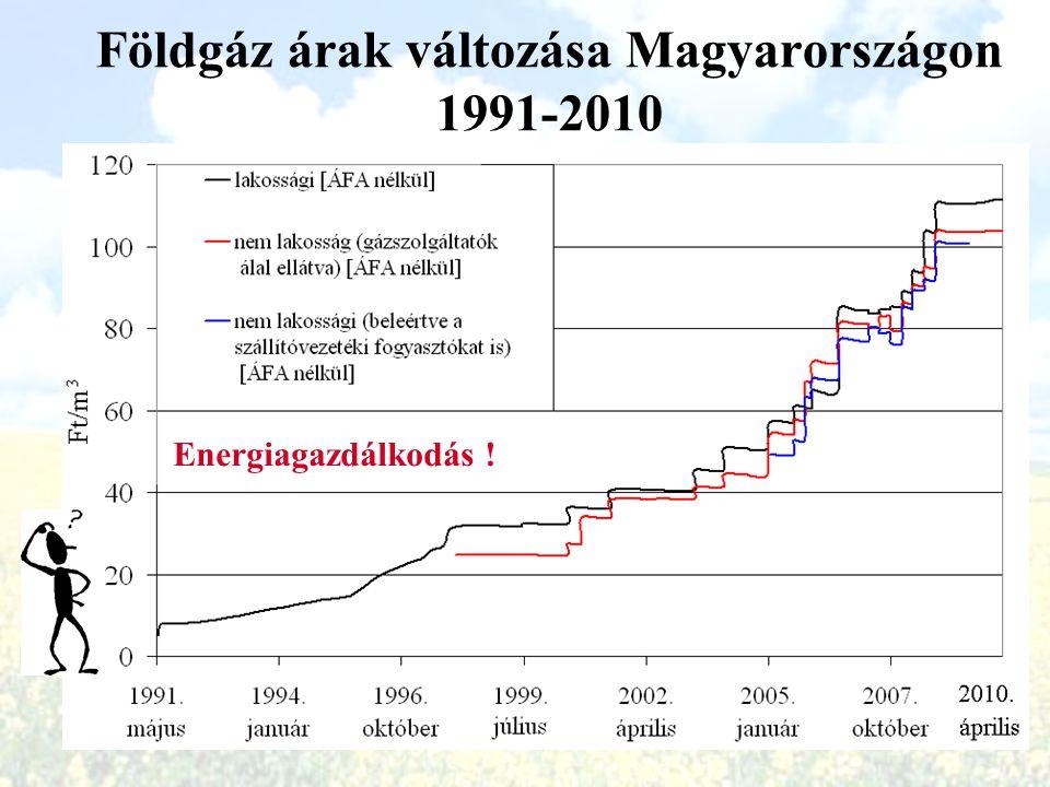 The Energy Audit 2009 Goal: Increase efficiency by 1%.