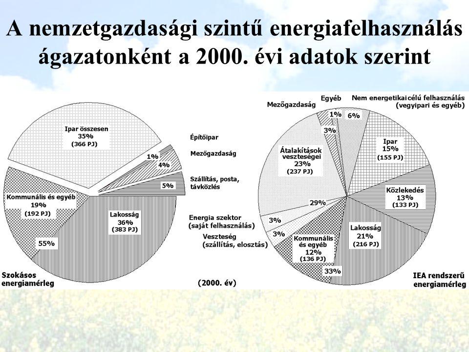 A nemzetgazdasági szintű energiafelhasználás ágazatonként a 2000. évi adatok szerint