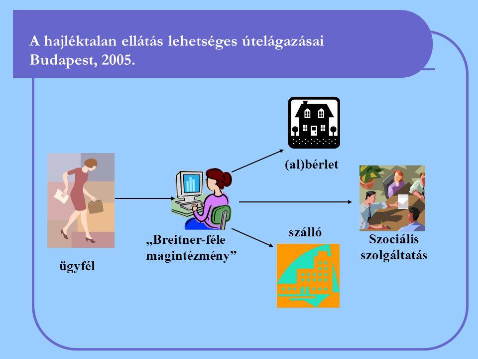 """A hajléktalan ellátás lehetséges útelágazásai Budapest, 2005. (al)bérlet szálló Szociális szolgáltatás ügyfél """"Breitner-féle magintézmény"""""""