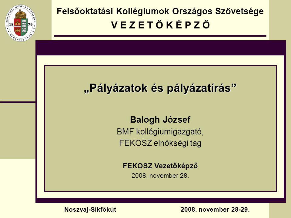 A pályázat külleme, stílusa Tippek, trükkök, javaslatok  Az olvasható méretű, magyar ékezetes karakterekkel rendelkező betűtípus, illetve a megfelelő sorköz választása áttekinthetővé, olvashatóvá teszi az anyagot.