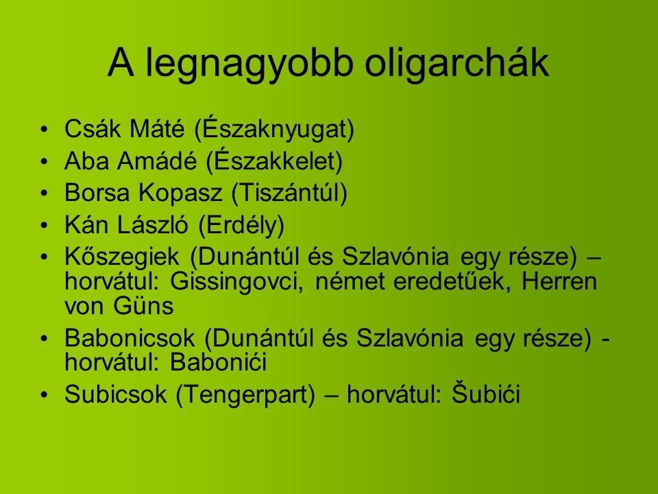 A legnagyobb oligarchák Csák Máté (Északnyugat) Aba Amádé (Északkelet) Borsa Kopasz (Tiszántúl) Kán László (Erdély) Kőszegiek (Dunántúl és Szlavónia e