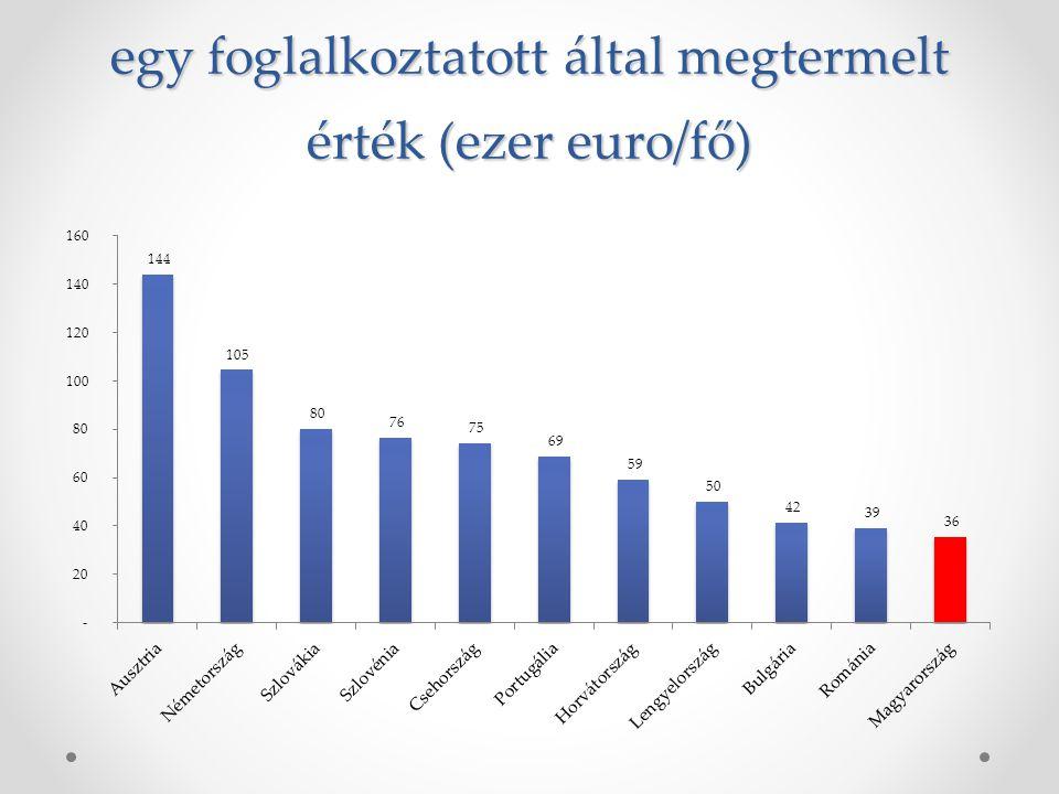 egy foglalkoztatott által megtermelt érték (ezer euro/fő)
