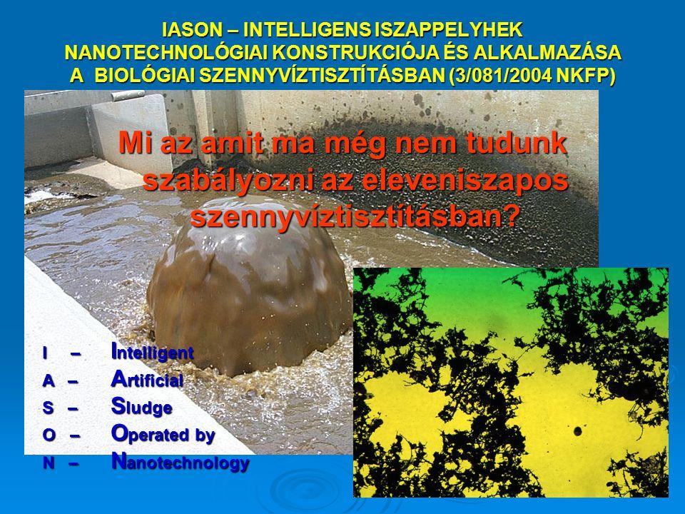 IASON – INTELLIGENS ISZAPPELYHEK NANOTECHNOLÓGIAI KONSTRUKCIÓJA ÉS ALKALMAZÁSA A BIOLÓGIAI SZENNYVÍZTISZTÍTÁSBAN (3/081/2004 NKFP) Mi az amit ma még n