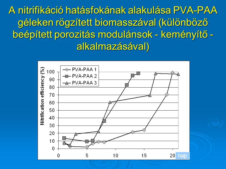 A nitrifikáció hatásfokának alakulása PVA-PAA géleken rögzített biomasszával (különböző beépített porozitás modulánsok - keményítő - alkalmazásával) n