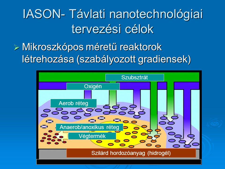 IASON- Távlati nanotechnológiai tervezési célok  Mikroszkópos méretű reaktorok létrehozása (szabályozott gradiensek) Szilárd hordozóanyag (hidrogél)