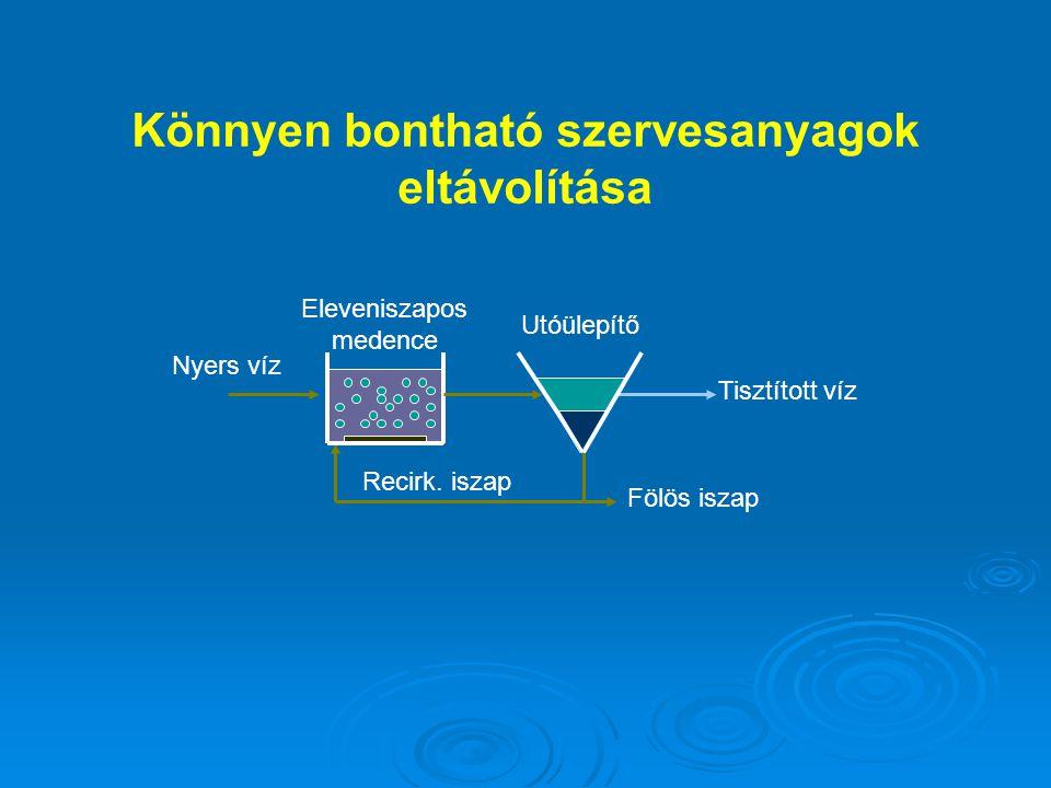 Fölös iszap Eleveniszapos medence Nyers víz Recirk. iszap Tisztított víz Utóülepítő Könnyen bontható szervesanyagok eltávolítása