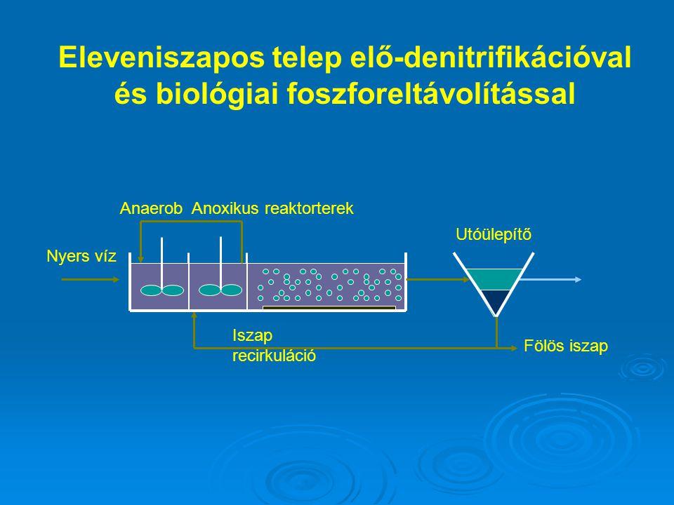 Fölös iszap Nyers víz Iszap recirkuláció Utóülepítő AnaerobAnoxikus reaktorterek Eleveniszapos telep elő-denitrifikációval és biológiai foszforeltávol