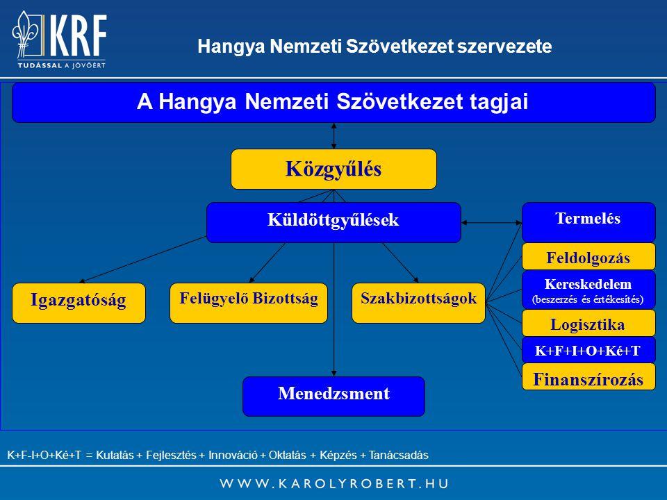 15 Hangya Nemzeti Szövetkezet szervezete A Hangya Nemzeti Szövetkezet tagjai Közgyűlés Igazgatóság Menedzsment Felügyelő BizottságSzakbizottságok Feld