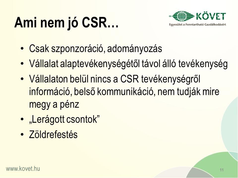 """Ami nem jó CSR… Csak szponzoráció, adományozás Vállalat alaptevékenységétől távol álló tevékenység Vállalaton belül nincs a CSR tevékenységről információ, belső kommunikáció, nem tudják mire megy a pénz """"Lerágott csontok Zöldrefestés 11"""