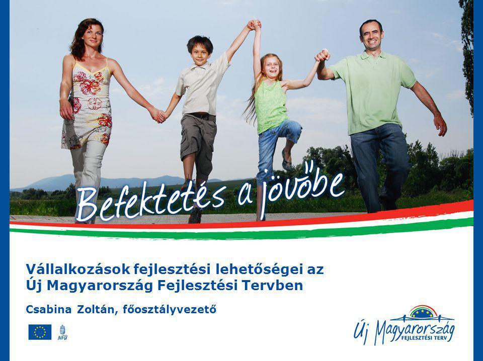 Vállalkozások Fejlesztési Lehetőségei az Új Magyarország Fejlesztési Tervben Új eljárások – egységes folyamatok Pályázatok:Pályázatok: –Egyfordulós pályázat normatív (= jogosultság alapú) is lehet –Kétfordulós pályázat (előzetes javaslat  részletes kidolgozás, előkészítési támogatás) Speciális támogatások:Speciális támogatások: –Közvetett támogatás –Hitel, tőke, garancia (visszatérítendő) Pályázat nélküli egyedi jóváhagyásPályázat nélküli egyedi jóváhagyás –Nagyprojekt –Kiemelt projekt – projektcsatorna