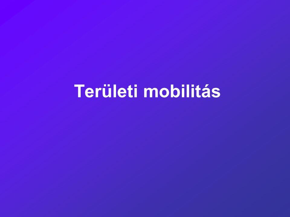 Területi mobilitás
