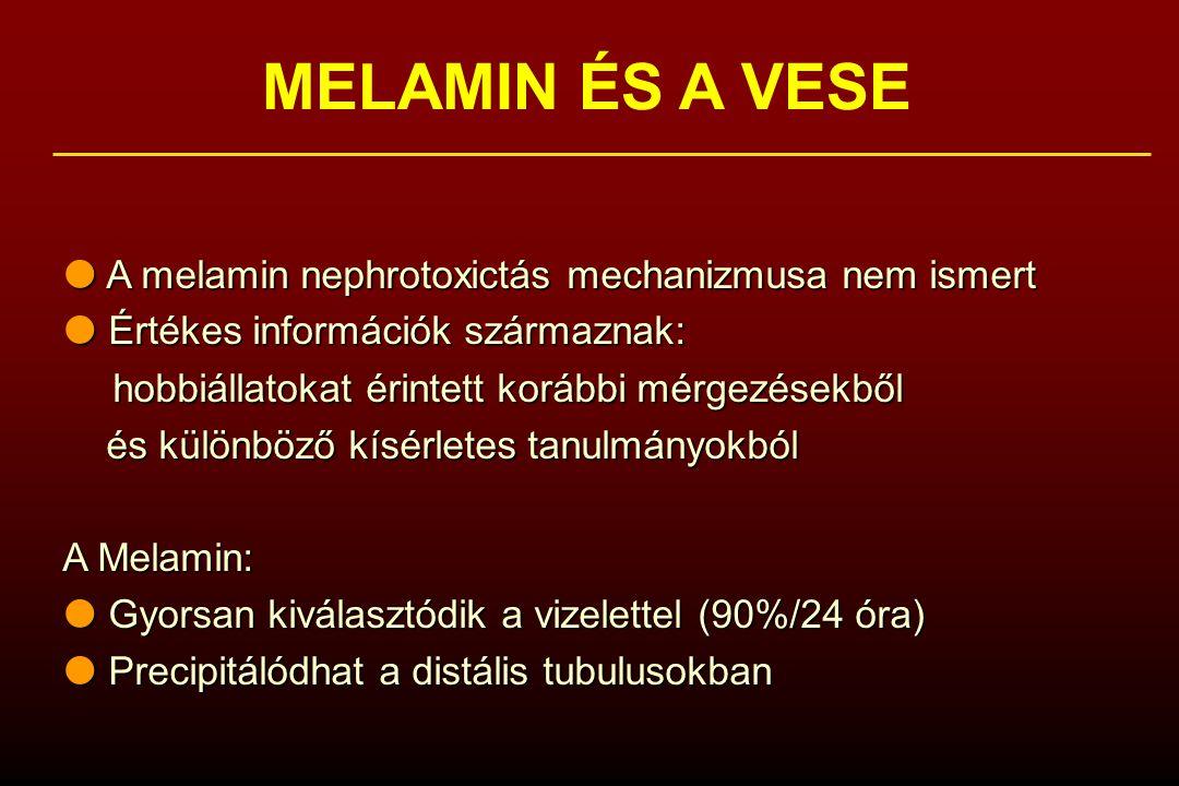 MELAMIN ÉS A VESE  A melamin nephrotoxictás mechanizmusa nem ismert  Értékes információk származnak: hobbiállatokat érintett korábbi mérgezésekből hobbiállatokat érintett korábbi mérgezésekből és különböző kísérletes tanulmányokból és különböző kísérletes tanulmányokból A Melamin:  Gyorsan kiválasztódik a vizelettel (90%/24 óra)  Precipitálódhat a distális tubulusokban