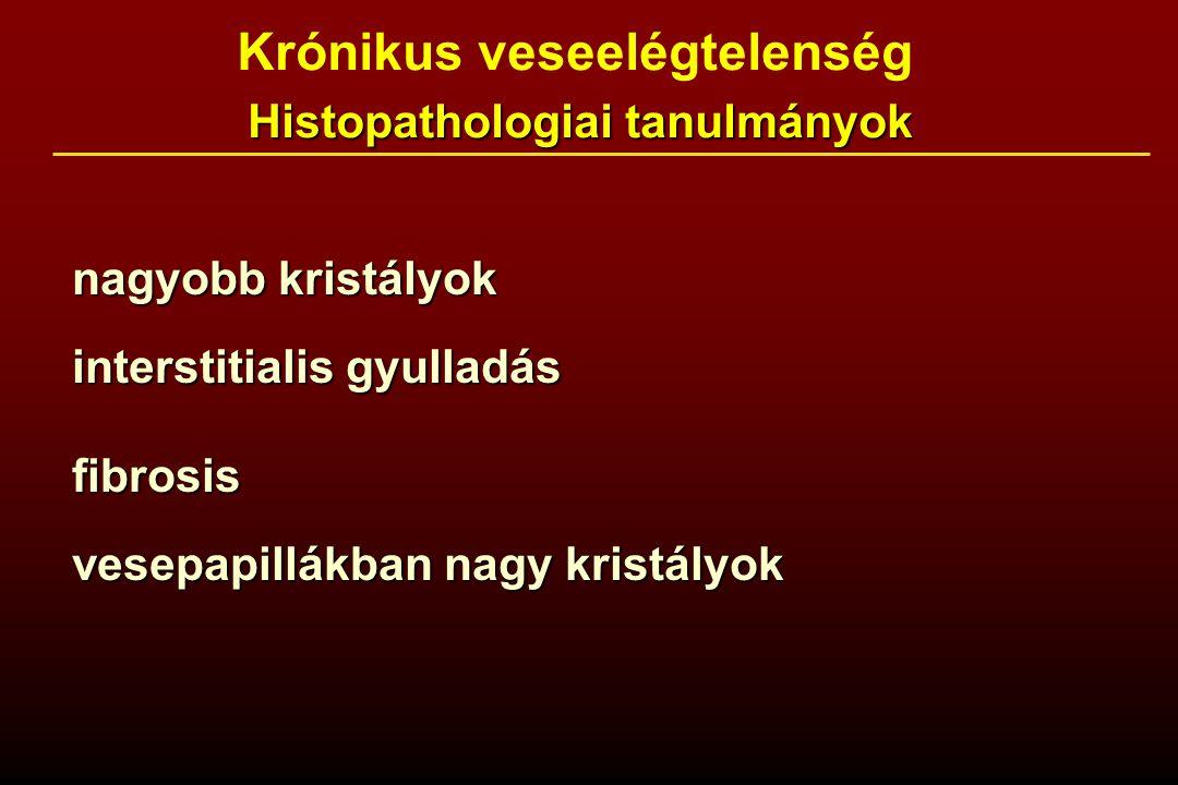 Krónikus veseelégtelenség Histopathologiai tanulmányok Histopathologiai tanulmányok nagyobb kristályok interstitialis gyulladás fibrosis vesepapillákban nagy kristályok