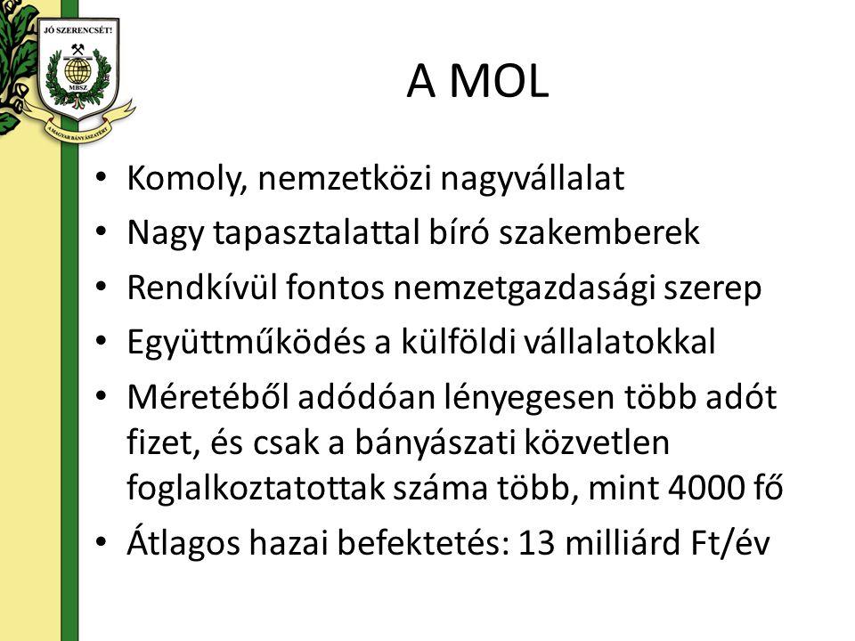 A MOL Komoly, nemzetközi nagyvállalat Nagy tapasztalattal bíró szakemberek Rendkívül fontos nemzetgazdasági szerep Együttműködés a külföldi vállalatok