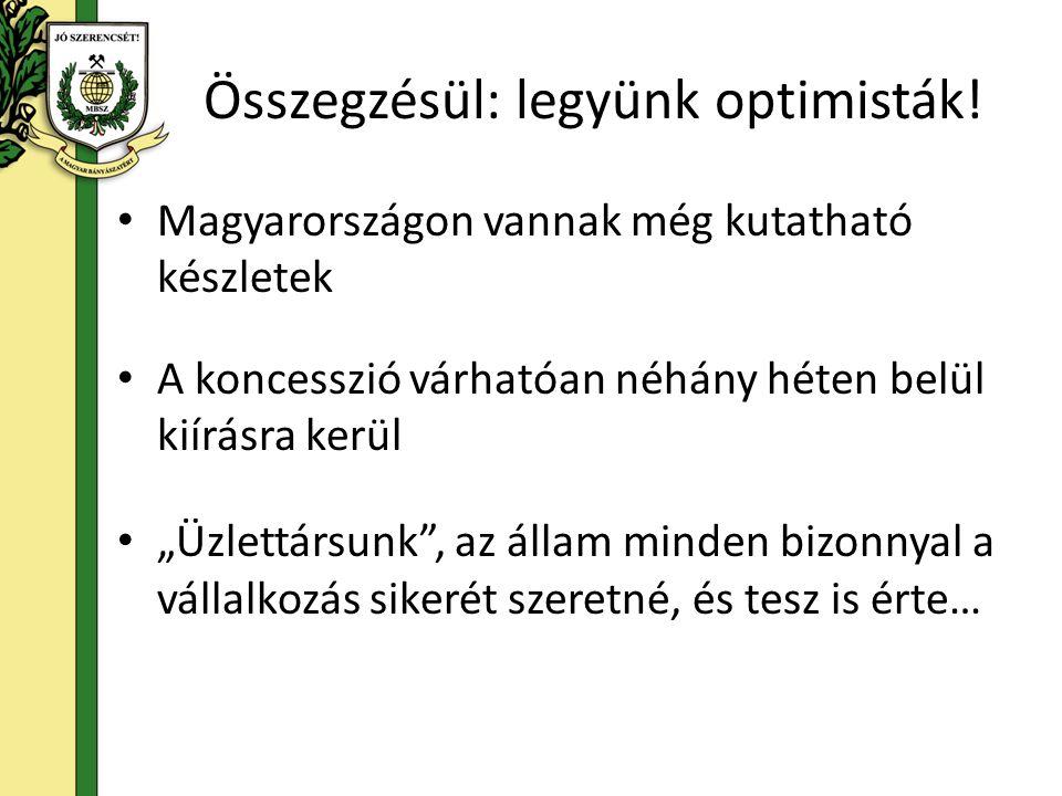 """Összegzésül: legyünk optimisták! Magyarországon vannak még kutatható készletek A koncesszió várhatóan néhány héten belül kiírásra kerül """"Üzlettársunk"""""""